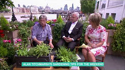 Alan Titchmarsh's Gardening Tips | This Morning