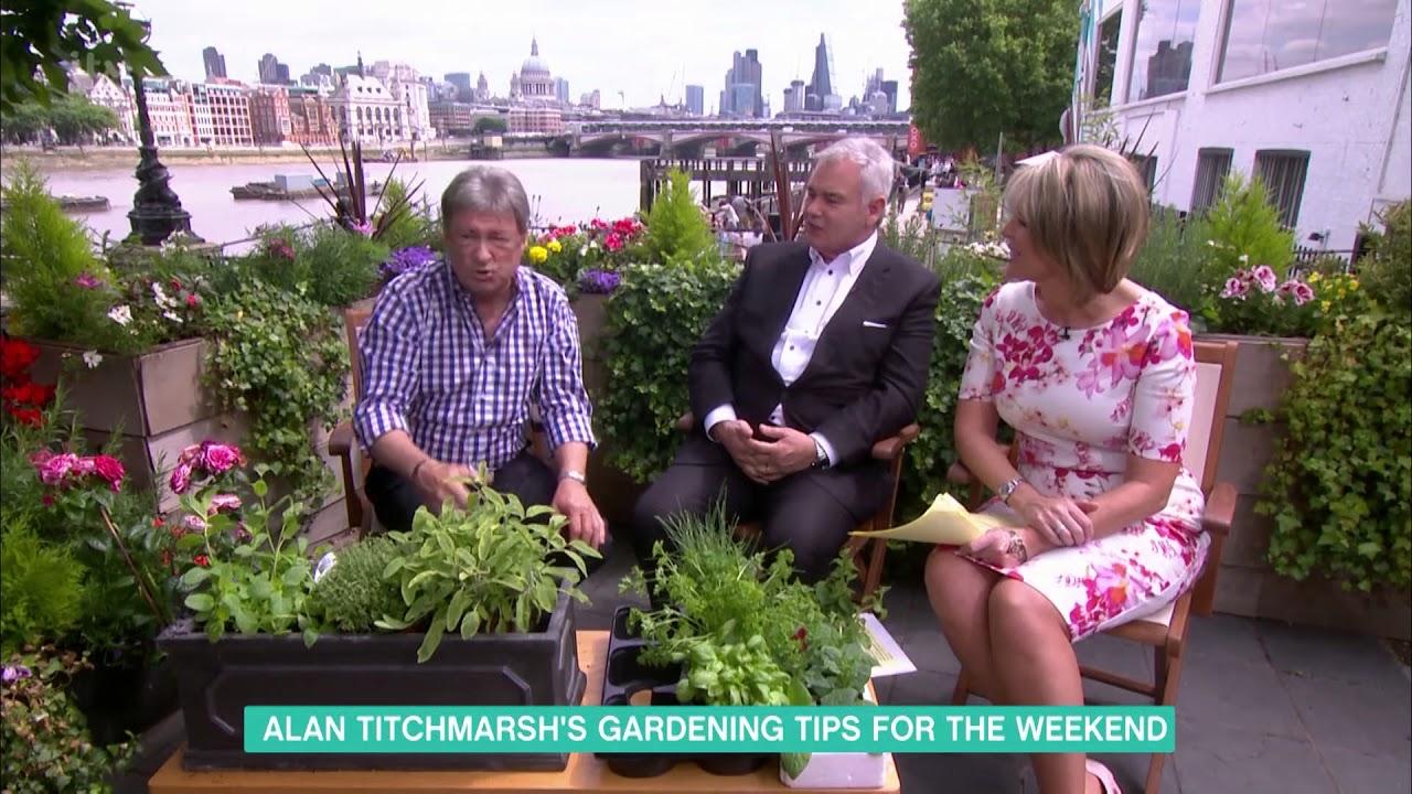 Alan Titchmarshs Gardening Tips This Morning YouTube