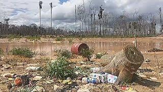Спутниковые технологии помогают узнать о нелегальной вырубке леса в Перу