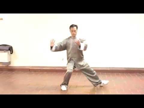 Chen Style Tai Chi Laojia Yilui by Master Fu Nengbin