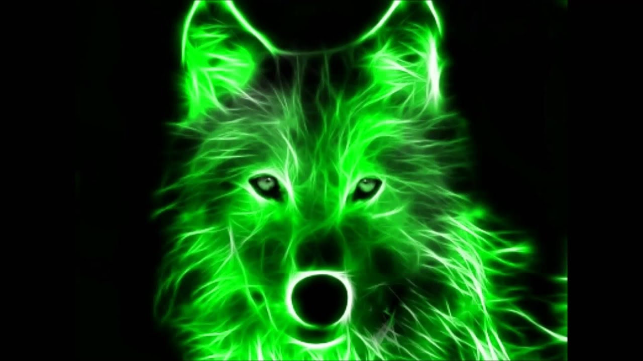 cool wolf neon background amazing beats backgrounds 3d