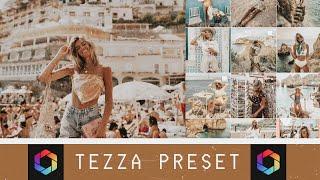 TEZZA PRESET Toasty + Efek Berdebu (AFTERLIGHT 2)