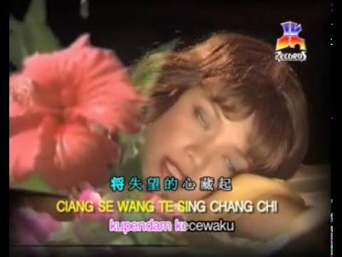(Karaoke Mandarin) Xiang Se