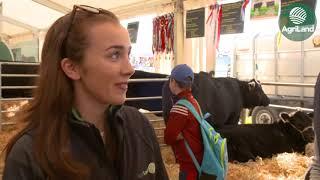 AgriLand's Emma Gilsenan speaks to represenatives of the Irish Angus Cattle Society...