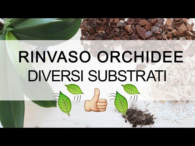 Rinvaso Orchidee - Diversi Substrati : Bark, Mallo di Cocco e Sfagno