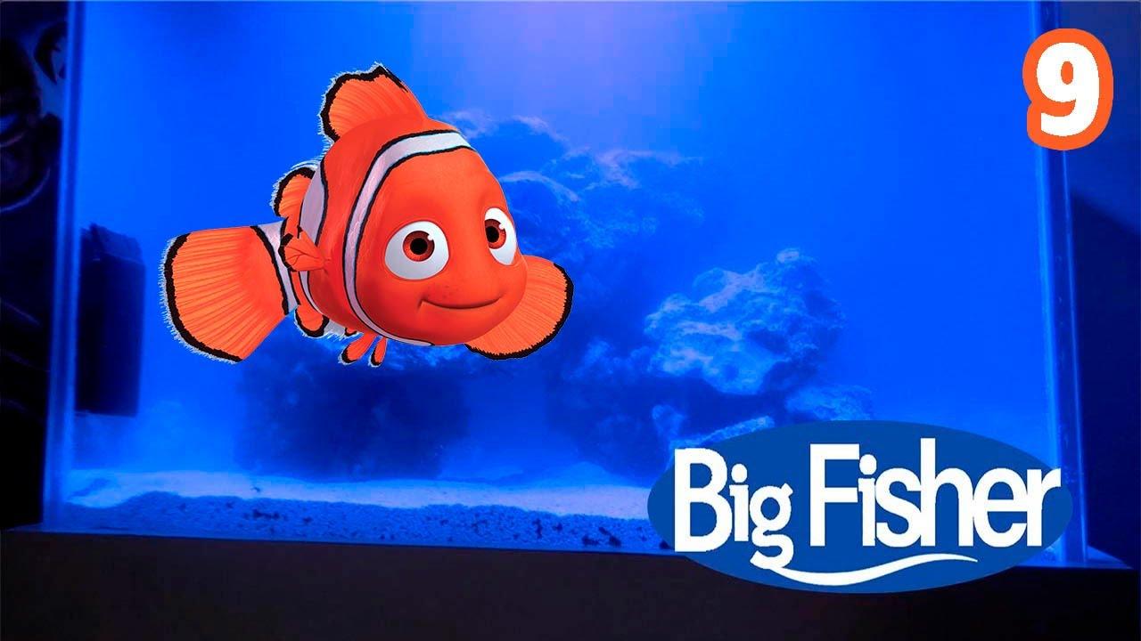 Ya tenemos peces y corales - Big fisher 9