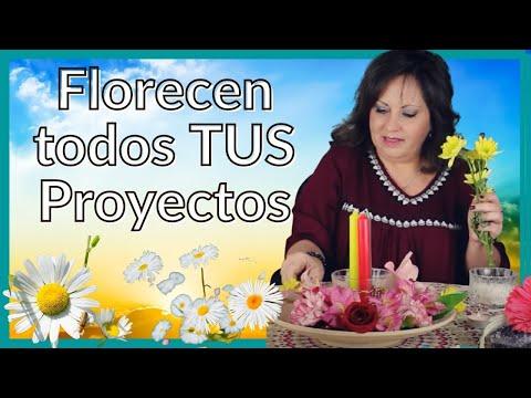 Ritual del Equinoccio de Primavera 2017 {ABUNDANCIA - AMOR - SALUD Y PROTECCIÓN}