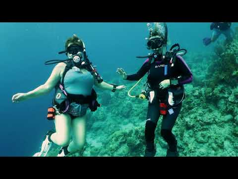 2017 St. Lucia Dive Trip  with Got Air Scuba at Anse Chastanet