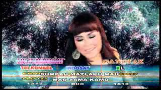 Video Emi Purnamasari   Cinta Memang Gila download MP3, 3GP, MP4, WEBM, AVI, FLV Agustus 2017