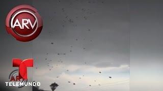 Lanzan desde el cielo amenazas a grupo criminal | Al Rojo Vivo | Telemundo