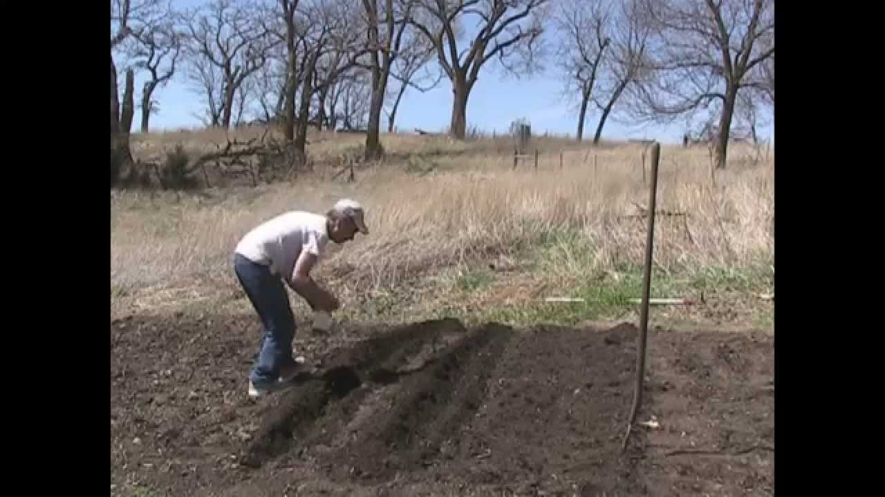 How I plant the Garden YouTube
