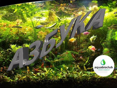 Азбука #аквариумистики. Все об #аквариуме и его #содержании.