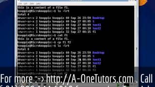 cp Command In UNIX