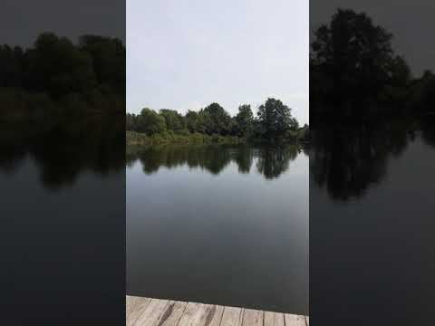 Der Teich von