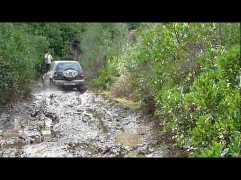 off-road and billykal with sportage I