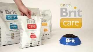 Полноценный гипоалергенный корм суперпремиум класса Brit Care