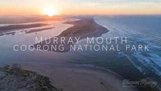 Murray River Bird aerial video - Murray Mouth - Discover Murray River