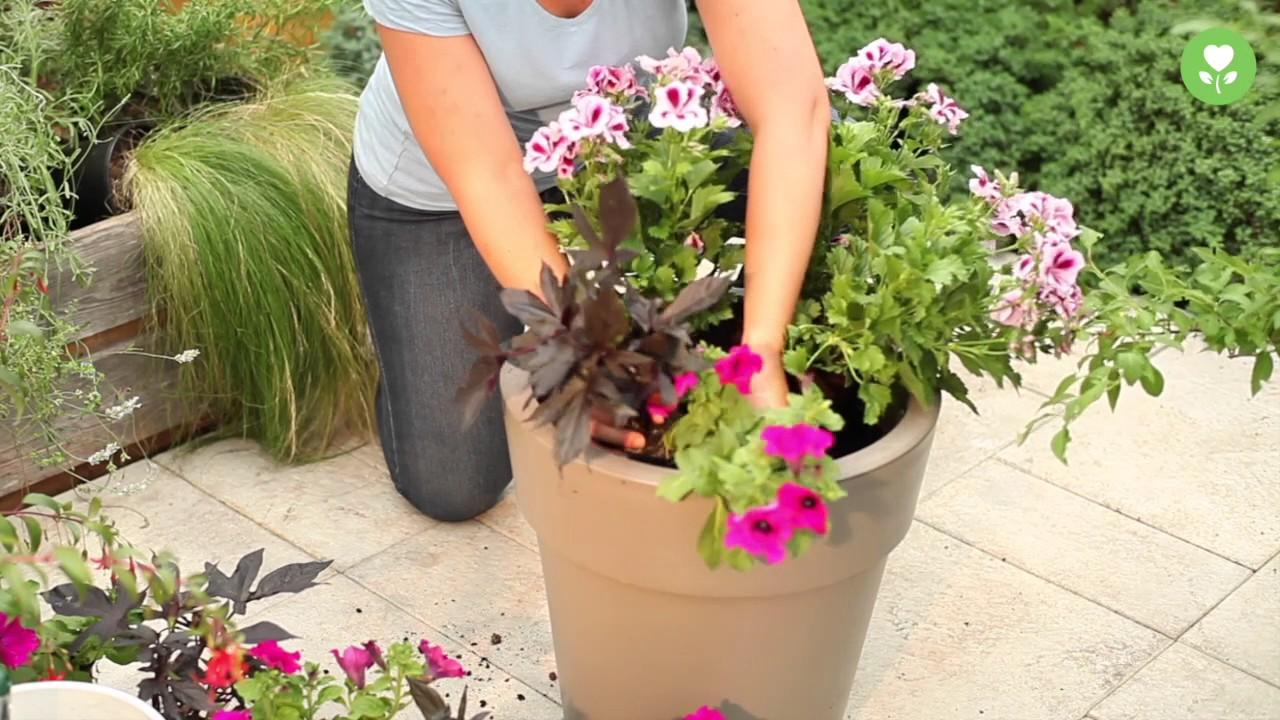 bepflanzen von pflanzschalen und balkonk sten youtube