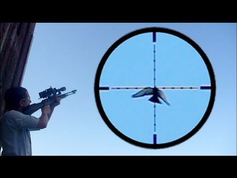 Shooting Pigeons in Flight with FX Revolution