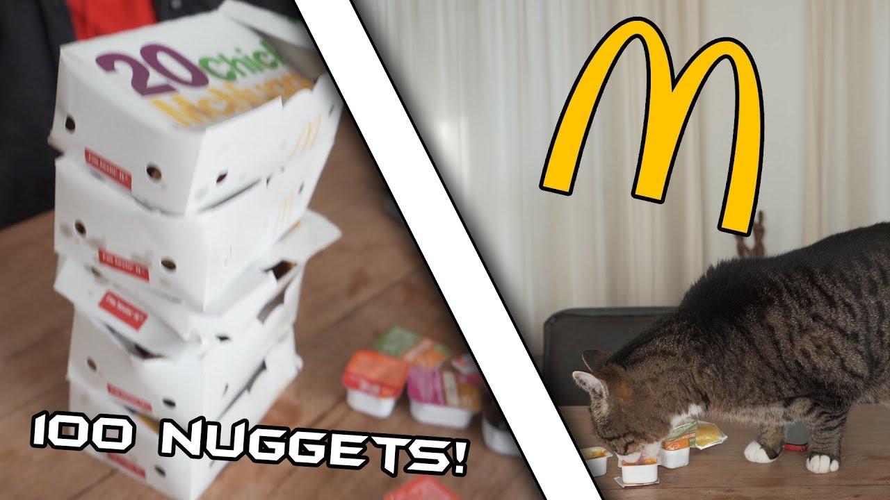 The Chicken Nugget Challenge! ft. Joey