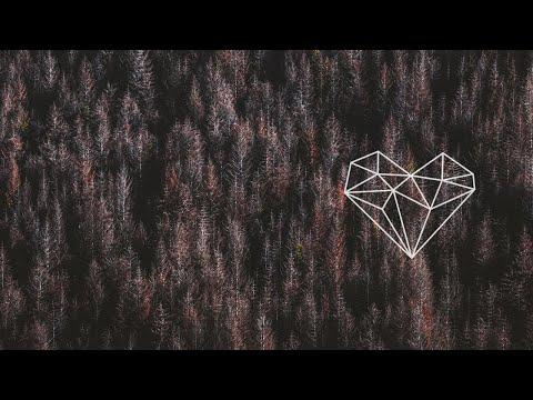 Marcus Meinhardt - Animal Kingdom bedava zil sesi indir