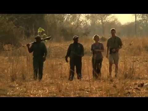 Return to the Wild- Walking Safari in Zambia