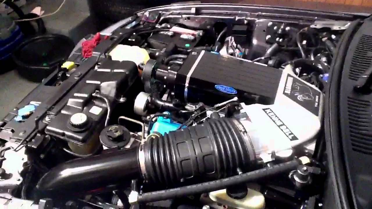 Mustang Gt Supercharger >> 03 Cobra 2.8 Kenne Bell Mammoth LC idle - YouTube