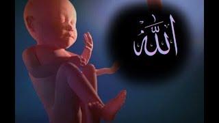 Download lagu Dialog Bayi Dengan Allah Menjelang Lahir Ke Dunia Yang Bikin Jutaan Orang Menangis MP3