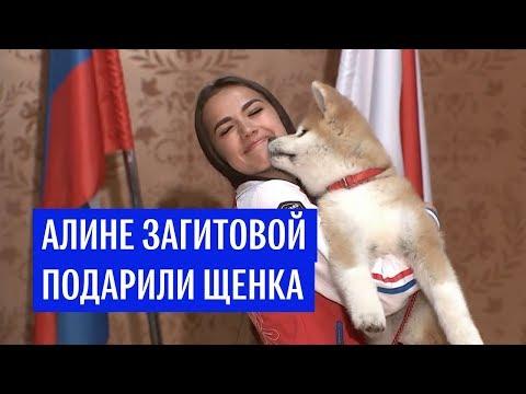 Российской фигуристке Загитовой подарили собаку породы акита-ину