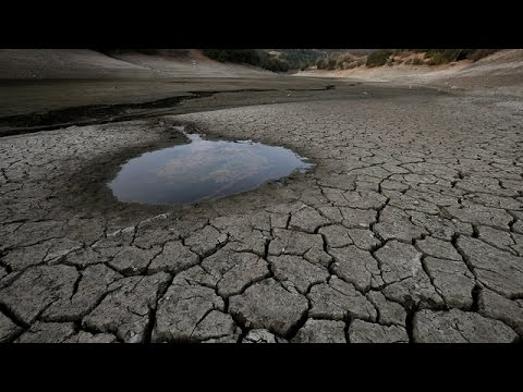 "Drought, Fire Season and the Water Debate, and ""Price Check"""