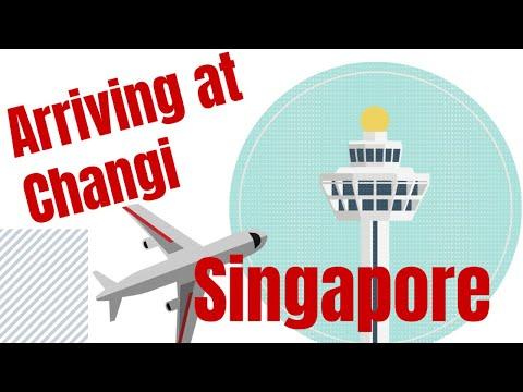 ARRIVING AT SINGAPORE CHANGI AIRPORT / La Familia Rosa