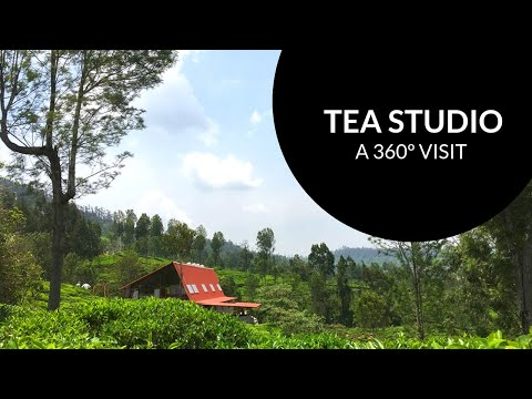 Exceptional new Drone footage of the Tea Studio