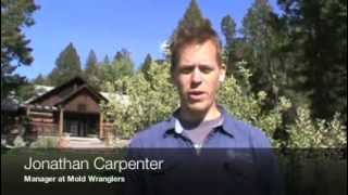 Montana Rodent decontamination | Cleaning up after Rats!