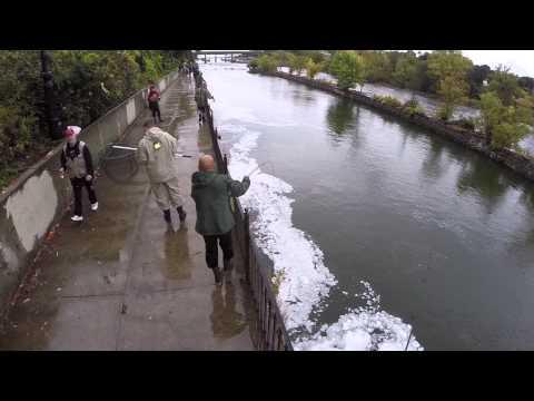 Salmon Run Oswego