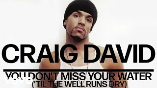 Craig David - You Don't Miss Your Water ('Til the Well Runs Dry) (Official Audio)