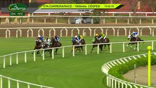 Vidéo de la course PMU MAIDEN COLTS 3YO 1800