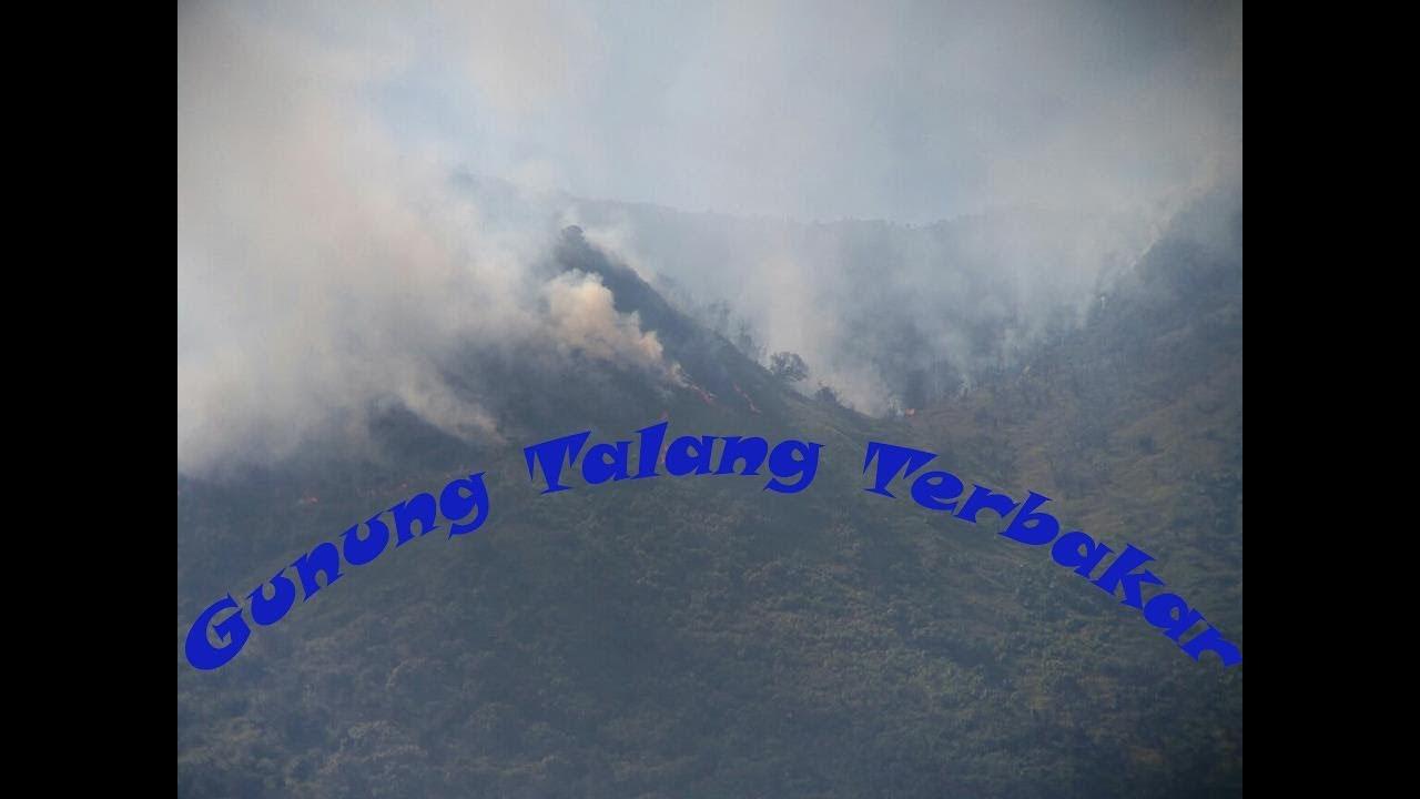 Gunung Talang Terbakar Pendaki Dicegah Naik YouTube
