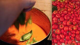 DIY Recipes: How to make Tomato Basil Soup from Scratch using Homegrown Organic Tomatoes Vegan