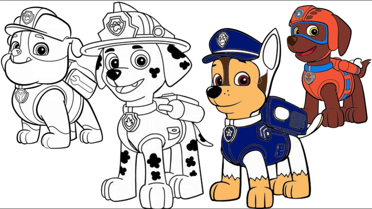 Paw Patrol Marshall Chase Zuma Rubble Coloring Pages Youtube Paw
