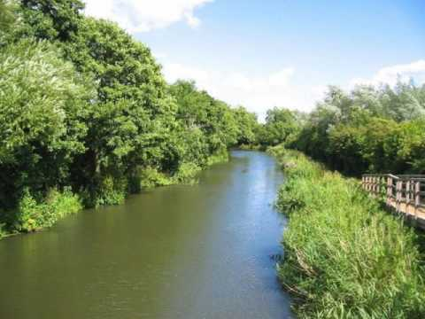 Ep  77 Peter Arlott, Fishery Keeper River Kennet