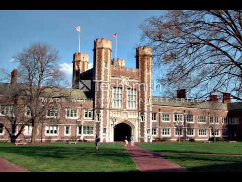 Washington University in st  louis