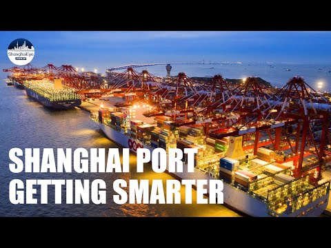 Shanghai Port: How automated is it to handle 143,000 TEUs per day?