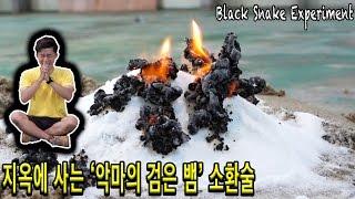 지옥에 살고있는 '악마의 검은 뱀' 소환 했는데 똥이 나왔다 - 허팝 (Black snake)