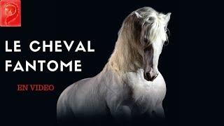 Le cheval Fantome