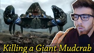 5 ways to kill a GIANT Mudcrab