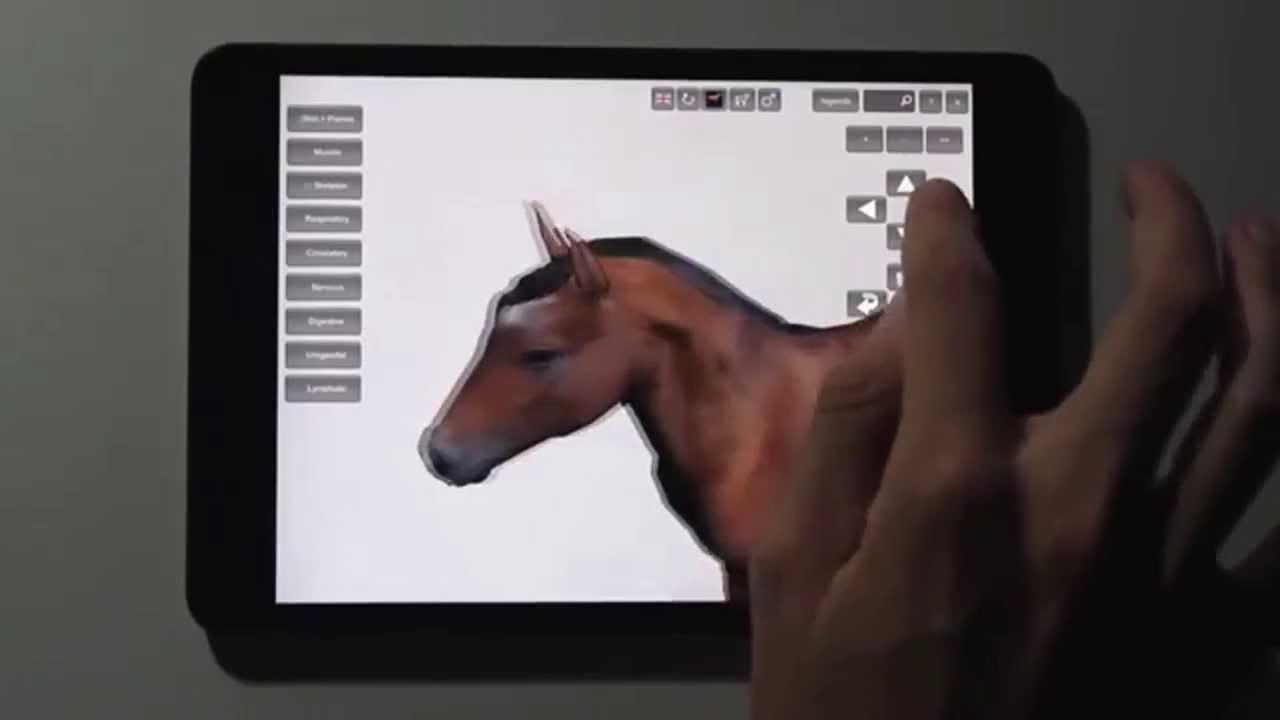 Datos Agrop. Software 3D de anatomía del caballo para el iPad - YouTube