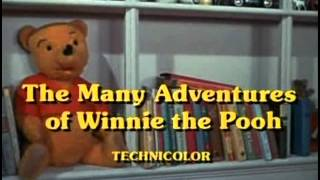 The Many Adventures of Winnie the Pooh - 11 - The Wonderful Thing About Tiggers (Reprise)