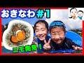 【沖縄の旅 #1】シュノーケルでニモ発見! ベイビーチャンネル
