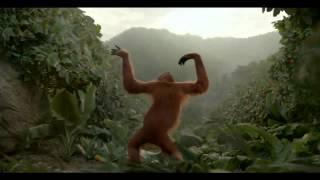 !!!Позитивный танцующий орангутанг!!!