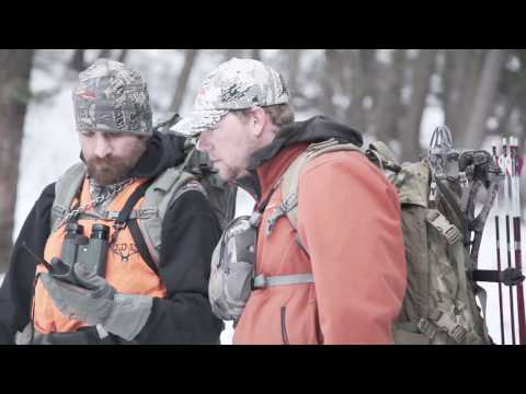 Hunting Montana Mountain Lions
